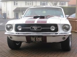 American Mustang for weddings in London