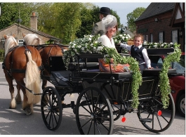 Horse and carriage for weddings and proms in Basingstoke
