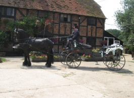 Horse and Carriage for weddings in Winchester