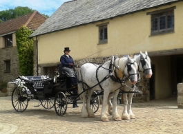 Wedding Horse and Carriage hire in Romsey