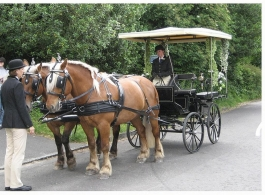 Horse and Carriage for weddings in Hartley Whitney