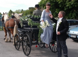 Horse and carriage wedding hire in Basingstoke, Hampshire