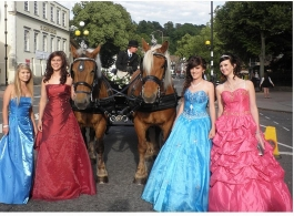 Horse and Carriage for wedding hire in Hook