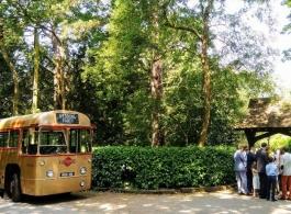 Single deck vintage bus for weddings in Guildford