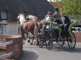Horse and carriage for weddings in Basingstoke