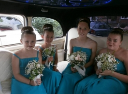 London wedding taxi for hire in Petersfield